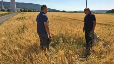 Zwei Mnner stehen auf einem Getreidefeld um die Ernte zu schtzen  NDR Fotograf Jennifer Lange