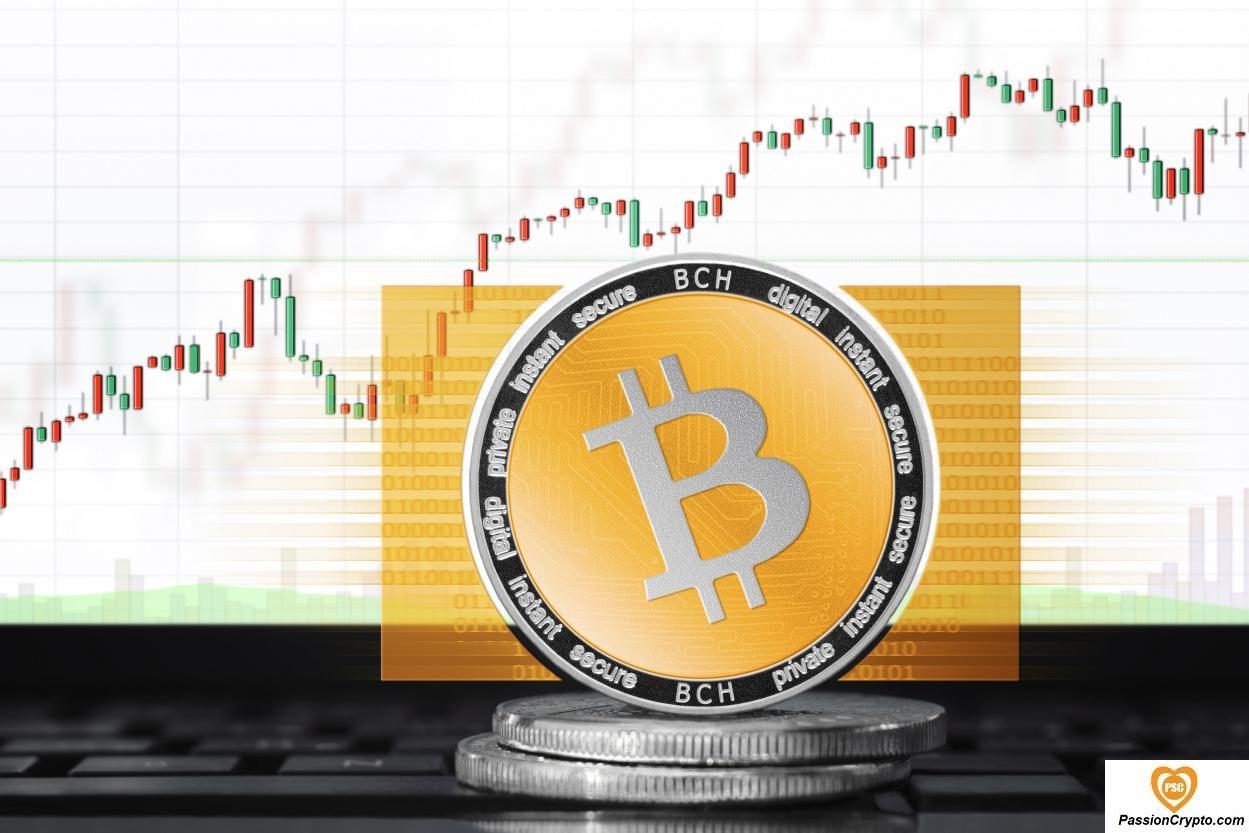 Prévisions et analyses Bitcoin Cash (BCH / USD) au 23 mai 2020