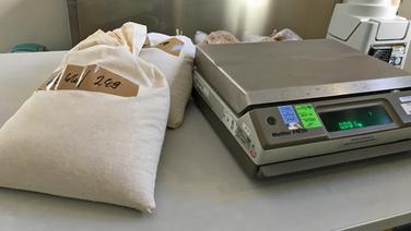 Zwei Leinenscke mit Getreideproben liegen neben einer Waage  NDR Fotograf Jennifer Lange