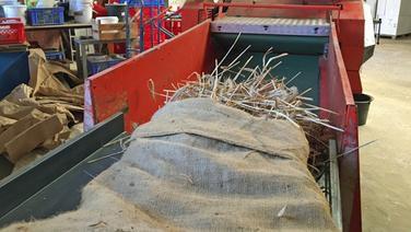 Getreide liegt auf einer roten Dreschmaschine  NDR Fotograf Jennifer Lange