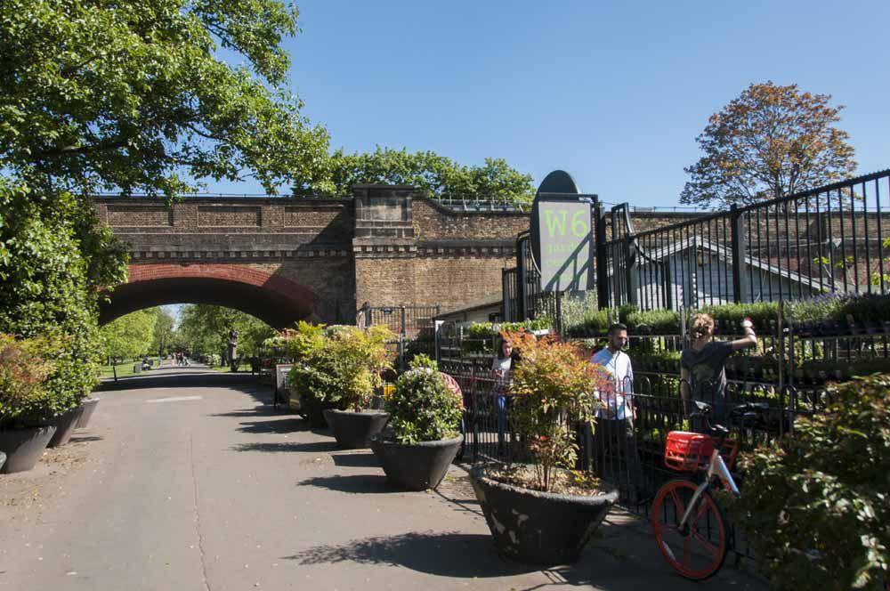 Hammersmith W6 Garden Centre