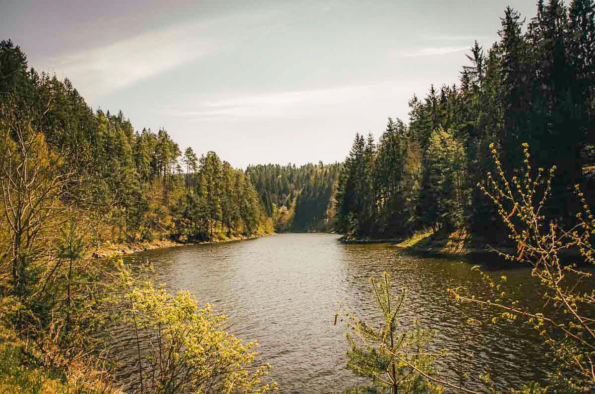 Erfrischende Wanderung am Ottensteiner Stausee: Mit vielen Badestopps